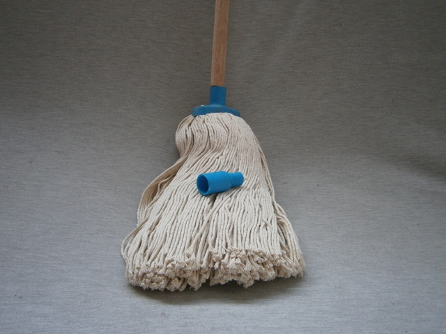 Mop Head + Wooden Handle